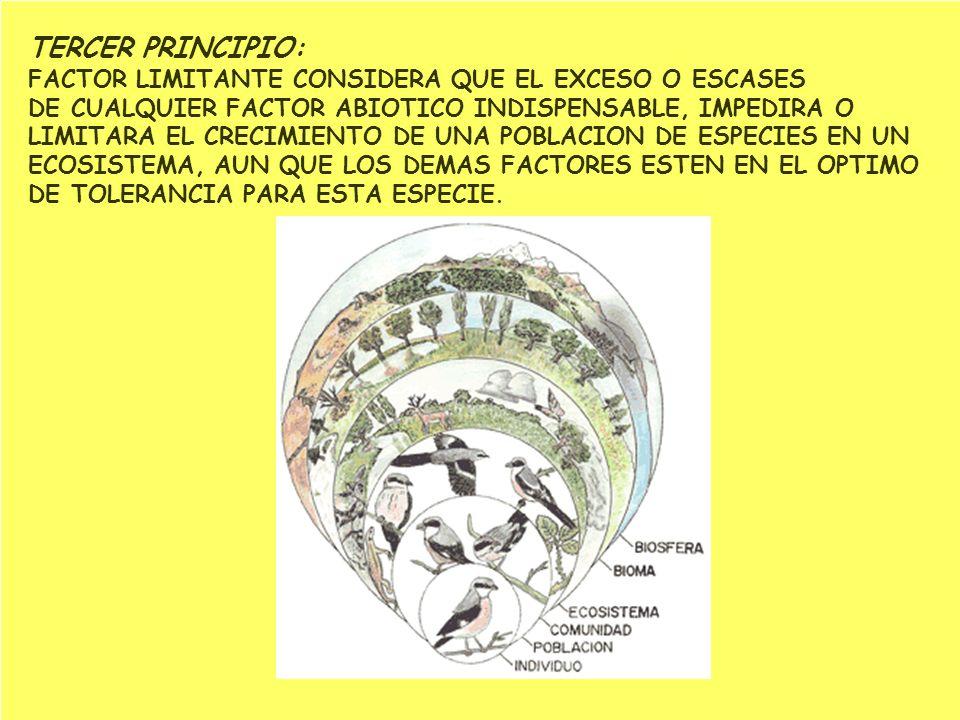 TERCER PRINCIPIO: FACTOR LIMITANTE CONSIDERA QUE EL EXCESO O ESCASES DE CUALQUIER FACTOR ABIOTICO INDISPENSABLE, IMPEDIRA O LIMITARA EL CRECIMIENTO DE