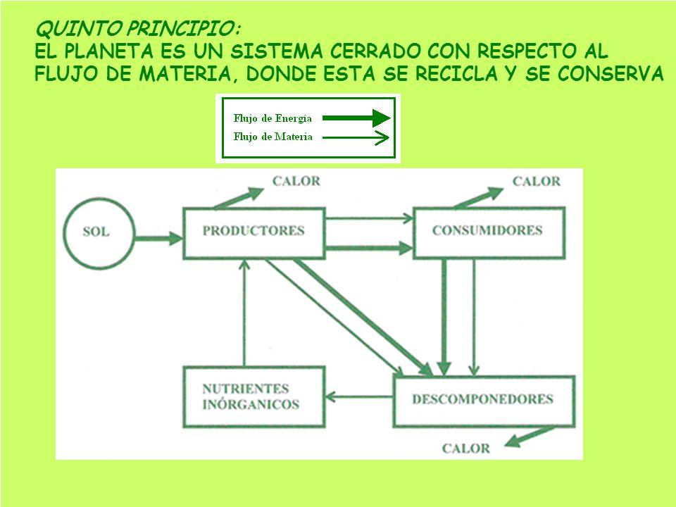 QUINTO PRINCIPIO: EL PLANETA ES UN SISTEMA CERRADO CON RESPECTO AL FLUJO DE MATERIA, DONDE ESTA SE RECICLA Y SE CONSERVA