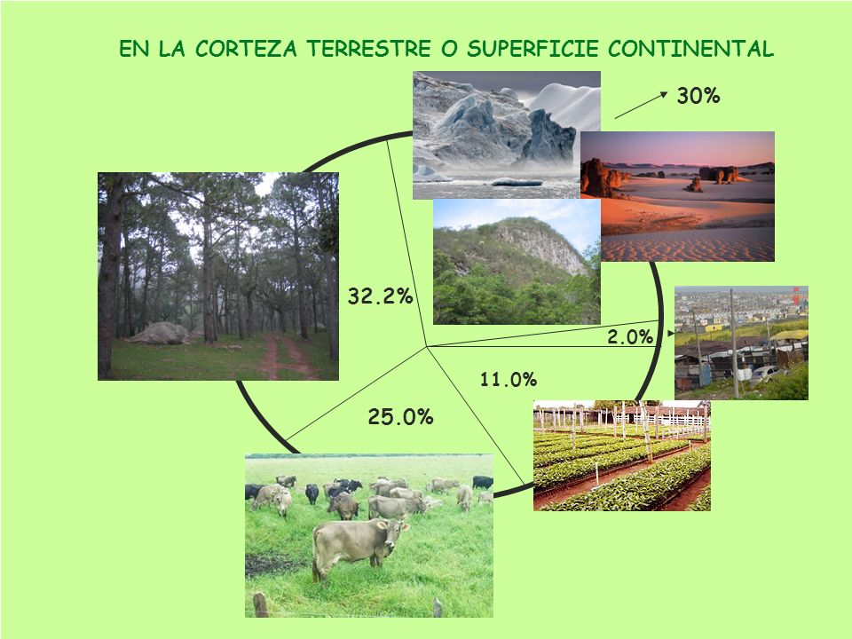 32.2% 30% 2.0% 11.0% 25.0% EN LA CORTEZA TERRESTRE O SUPERFICIE CONTINENTAL