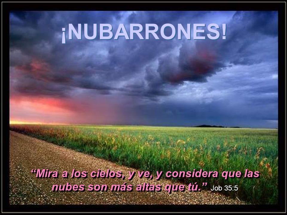 El que al viento observa, no sembrará; y el que mira a las nubes, no segará. Eclesiastés 11:4