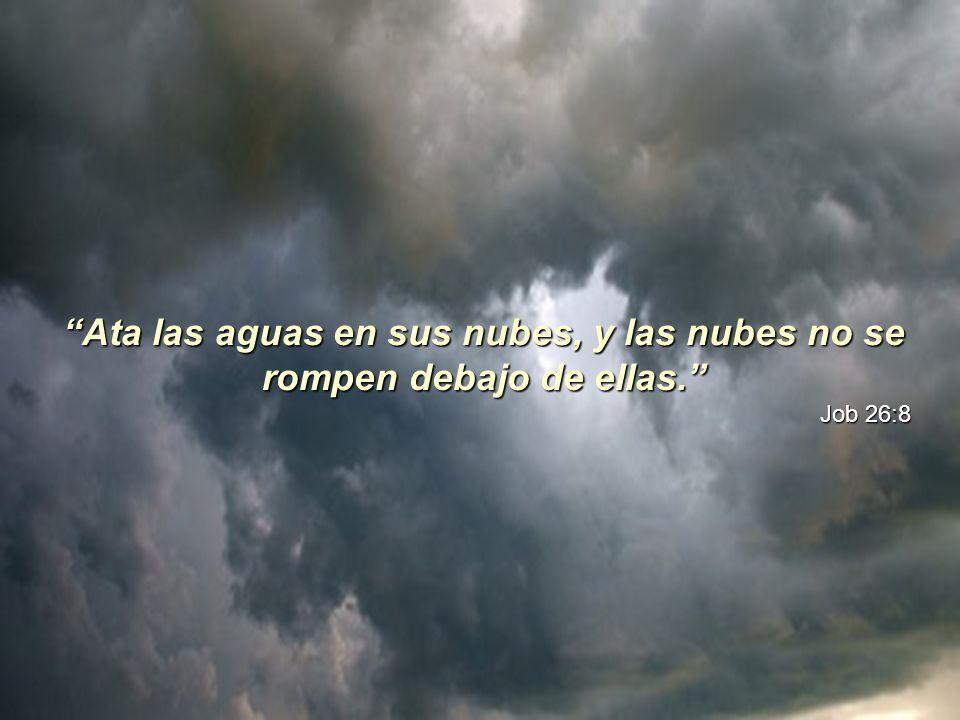 Las nubes son muy nombradas en la Biblia. Pueden ser símbolo de bendición y de maldición. Dan testimonio de la grandeza de Dios y de su perfecta creac