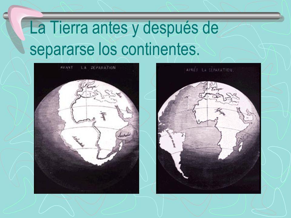 Las Placas Tectónicas Dania Martínez Arévalo Noveno grado