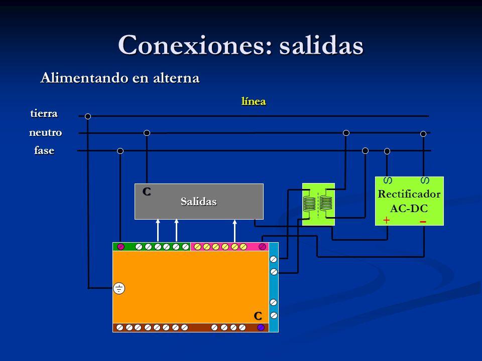 Conexiones: salidas Rectificador AC-DC SS + Alimentando en alterna línea fase neutro tierra Salidas C C