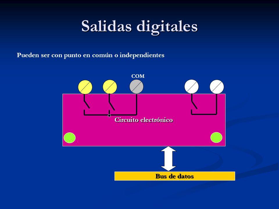 Salidas digitales Pueden ser con punto en común o independientes Circuito electrónico Bus de datos COM