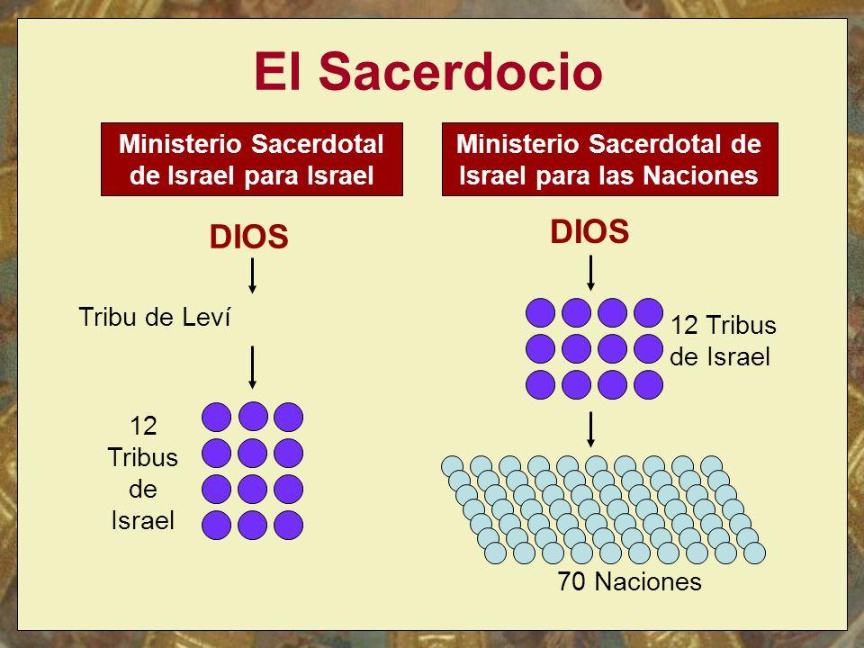 El Sacerdocio Ministerio Sacerdotal de Israel para Israel Ministerio Sacerdotal de Israel para las Naciones DIOS Tribu de Leví 12 Tribus de Israel 70 Naciones