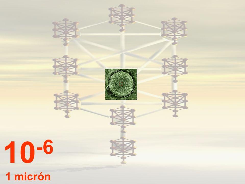 10 -5 10 micrones
