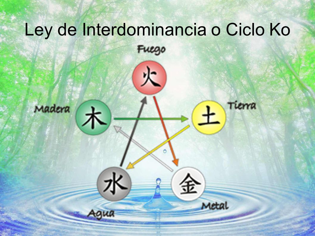 Ley de Interdominancia o Ciclo Ko