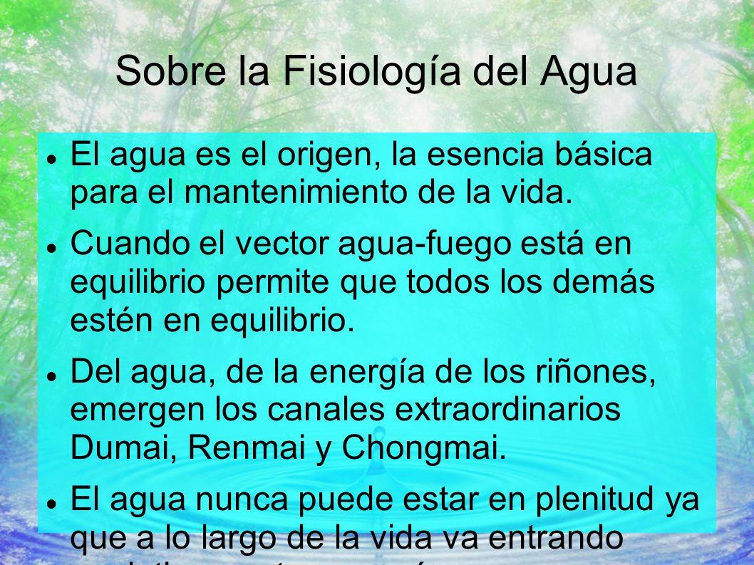 Sobre la Fisiología del Agua El agua es el origen, la esencia básica para el mantenimiento de la vida. Cuando el vector agua-fuego está en equilibrio