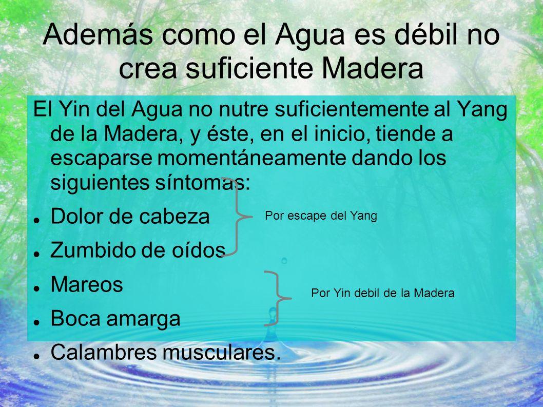 Además como el Agua es débil no crea suficiente Madera El Yin del Agua no nutre suficientemente al Yang de la Madera, y éste, en el inicio, tiende a e