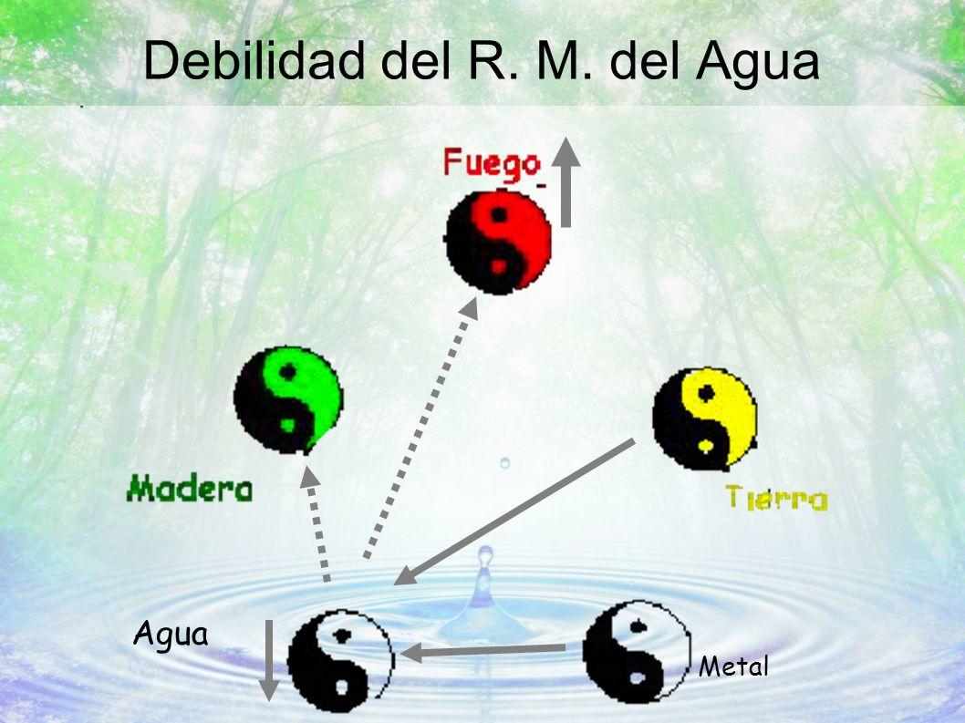 Debilidad del R. M. del Agua Metal Agua