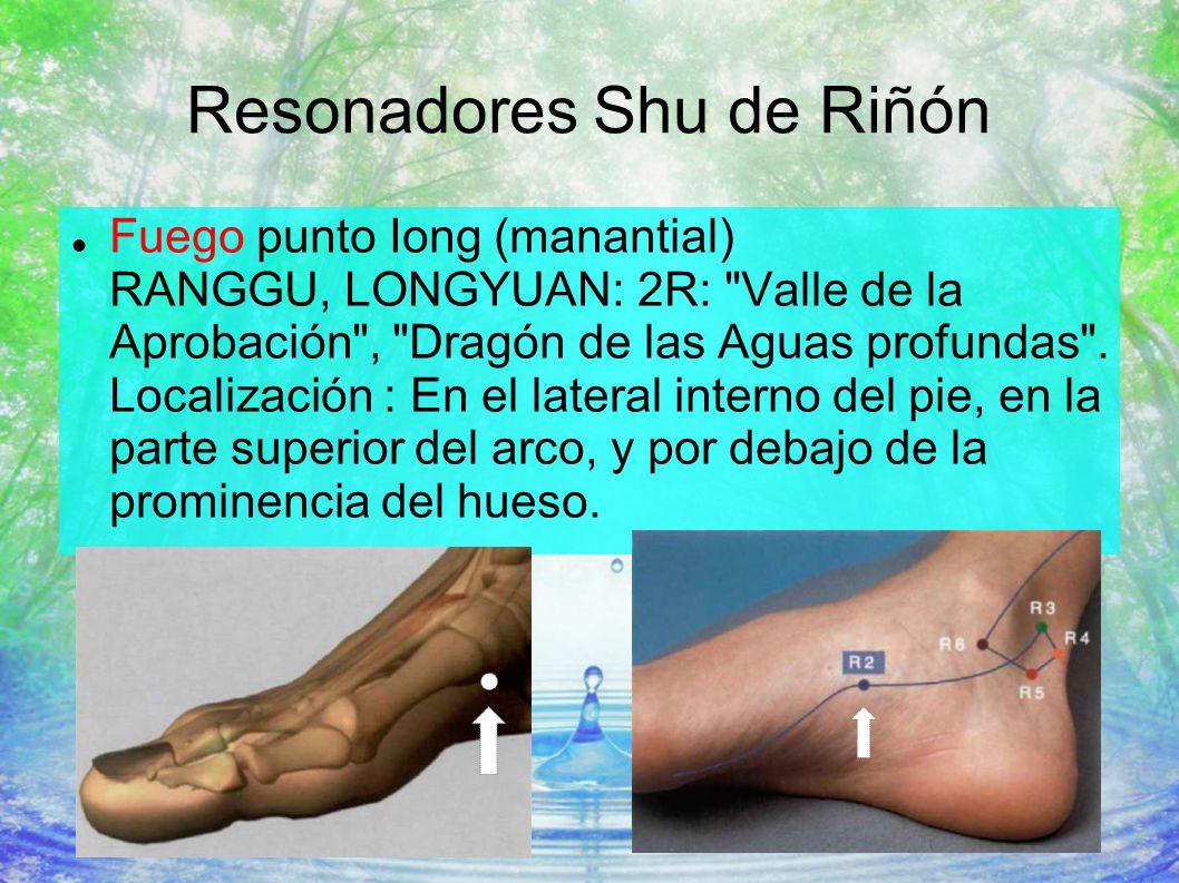 Resonadores Shu de Riñón Fuego punto Iong (manantial) RANGGU, LONGYUAN: 2R: