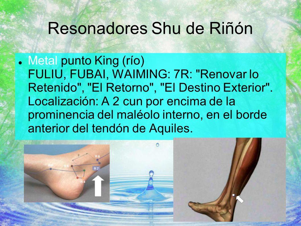 Resonadores Shu de Riñón Metal punto King (río) FULIU, FUBAI, WAIMING: 7R: