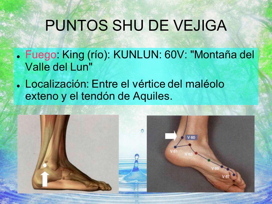 PUNTOS SHU DE VEJIGA Fuego: King (río): KUNLUN: 60V:
