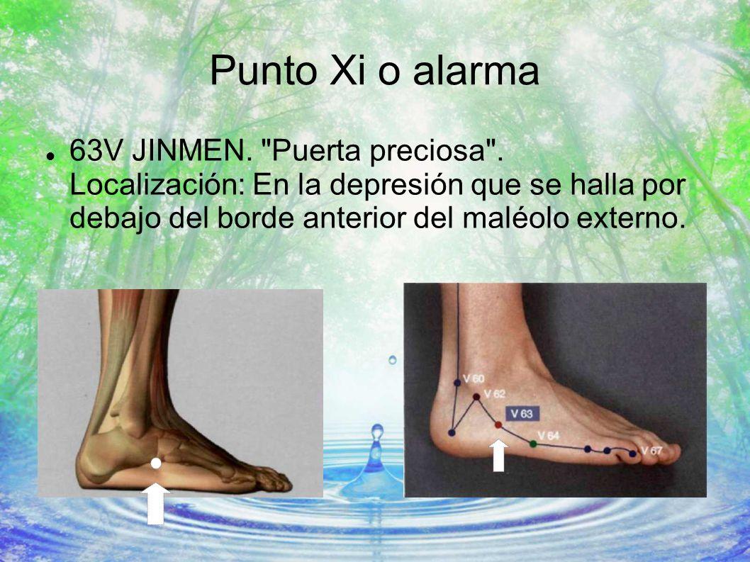 Punto Xi o alarma 63V JINMEN.