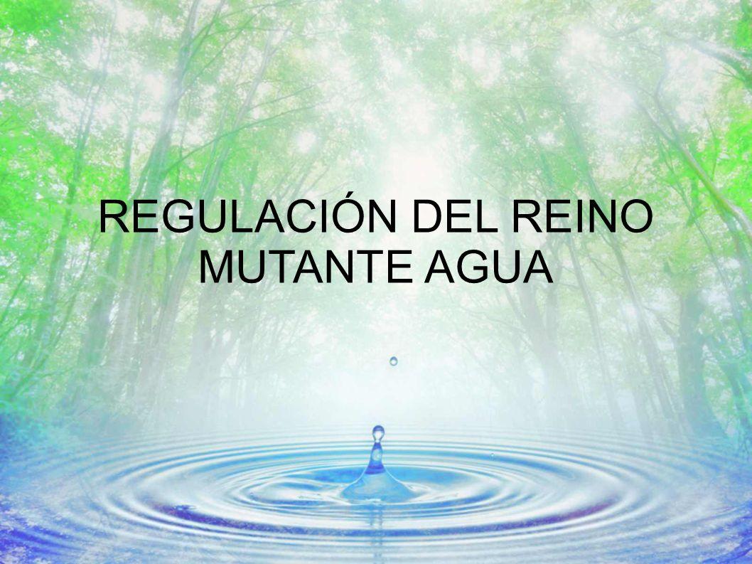 REGULACIÓN DEL REINO MUTANTE AGUA