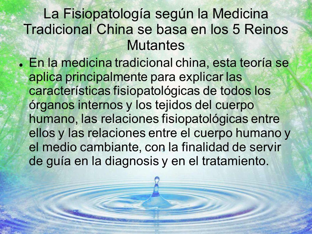 La Fisiopatología según la Medicina Tradicional China se basa en los 5 Reinos Mutantes En la medicina tradicional china, esta teoría se aplica princip