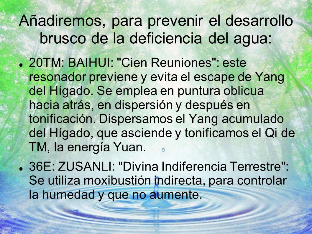 Añadiremos, para prevenir el desarrollo brusco de la deficiencia del agua: 20TM: BAIHUI: