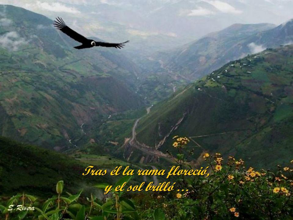 Tras él la tierra se cubrió, de verdor, de amor y paz.