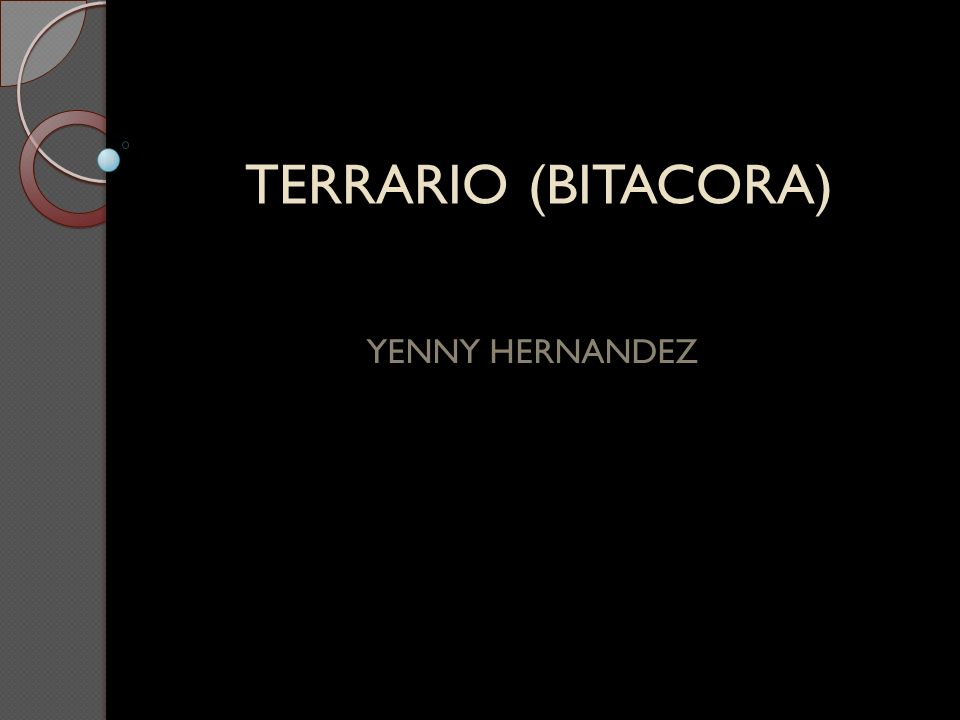 TERRARIO (BITACORA) YENNY HERNANDEZ
