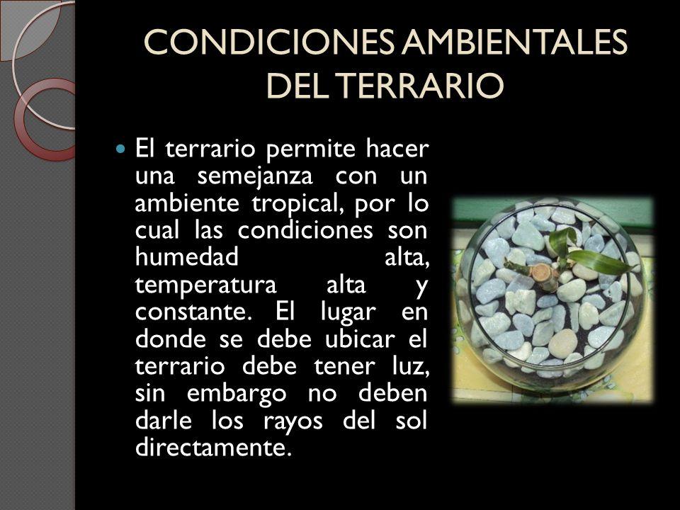 CONDICIONES AMBIENTALES DEL TERRARIO El terrario permite hacer una semejanza con un ambiente tropical, por lo cual las condiciones son humedad alta, t