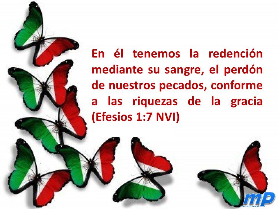 En él tenemos la redención mediante su sangre, el perdón de nuestros pecados, conforme a las riquezas de la gracia (Efesios 1:7 NVI)
