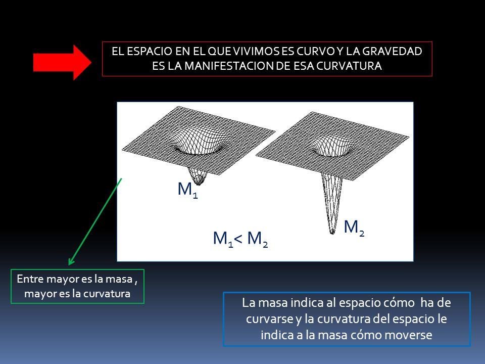 EL ESPACIO EN EL QUE VIVIMOS ES CURVO Y LA GRAVEDAD ES LA MANIFESTACION DE ESA CURVATURA M 1 < M 2 M1M1 M 2 La masa indica al espacio cómo ha de curva