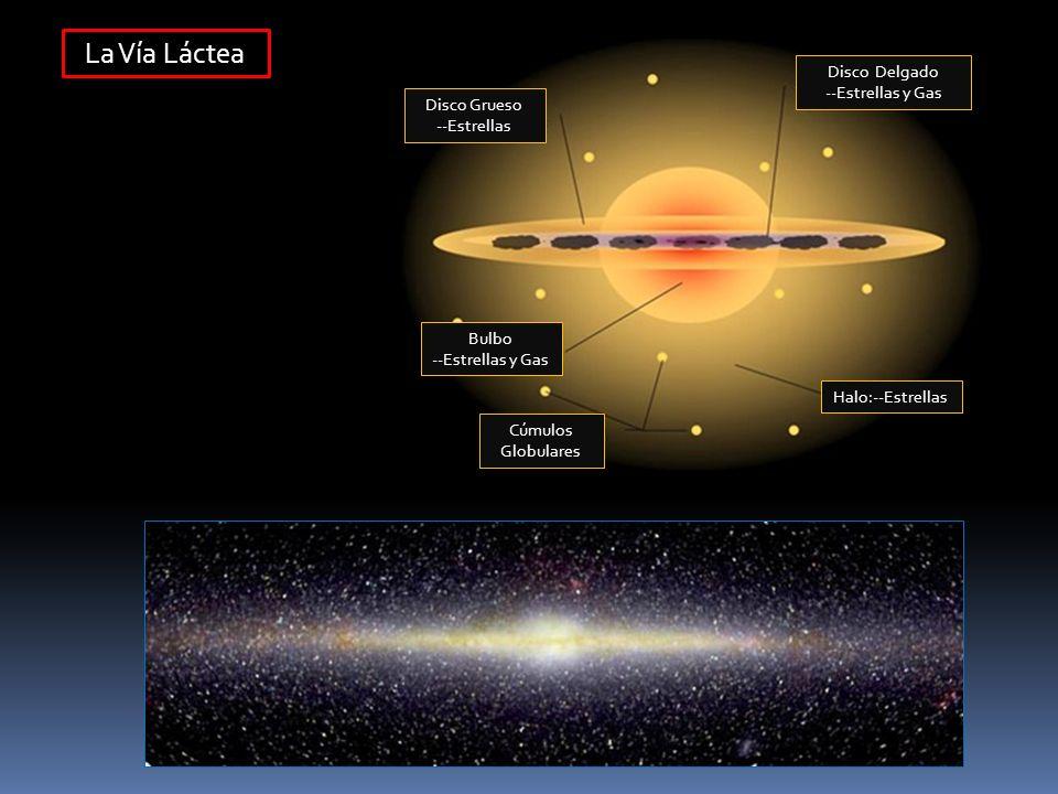 La Vía Láctea Disco Grueso --Estrellas Disco Delgado --Estrellas y Gas Bulbo --Estrellas y Gas Cúmulos Globulares Halo:--Estrellas