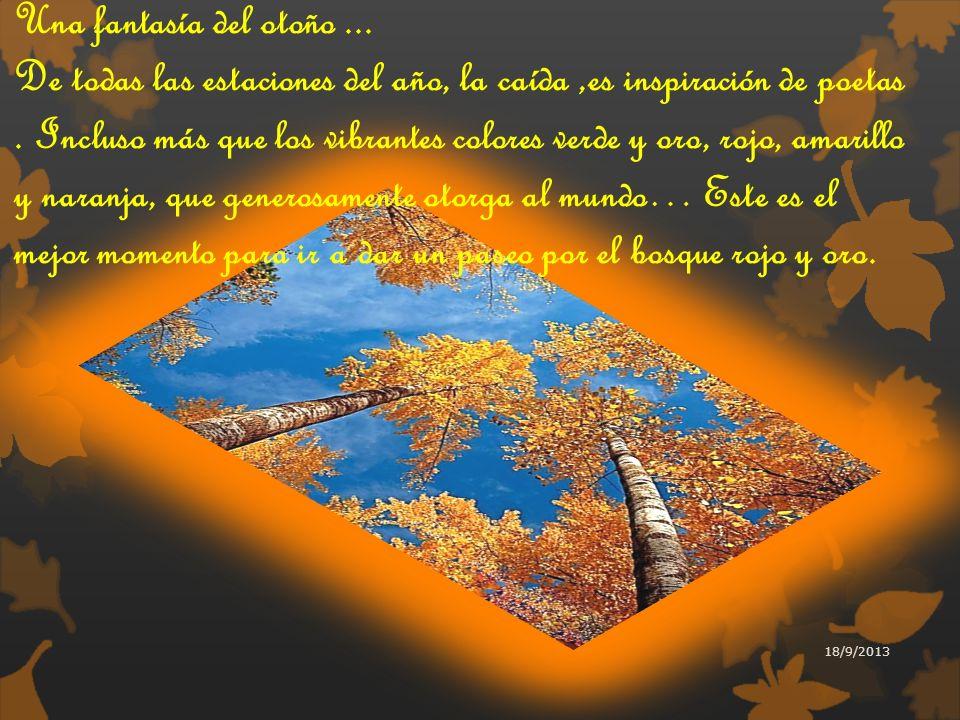 Una fantasía del otoño...De todas las estaciones del año, la caída,es inspiración de poetas.