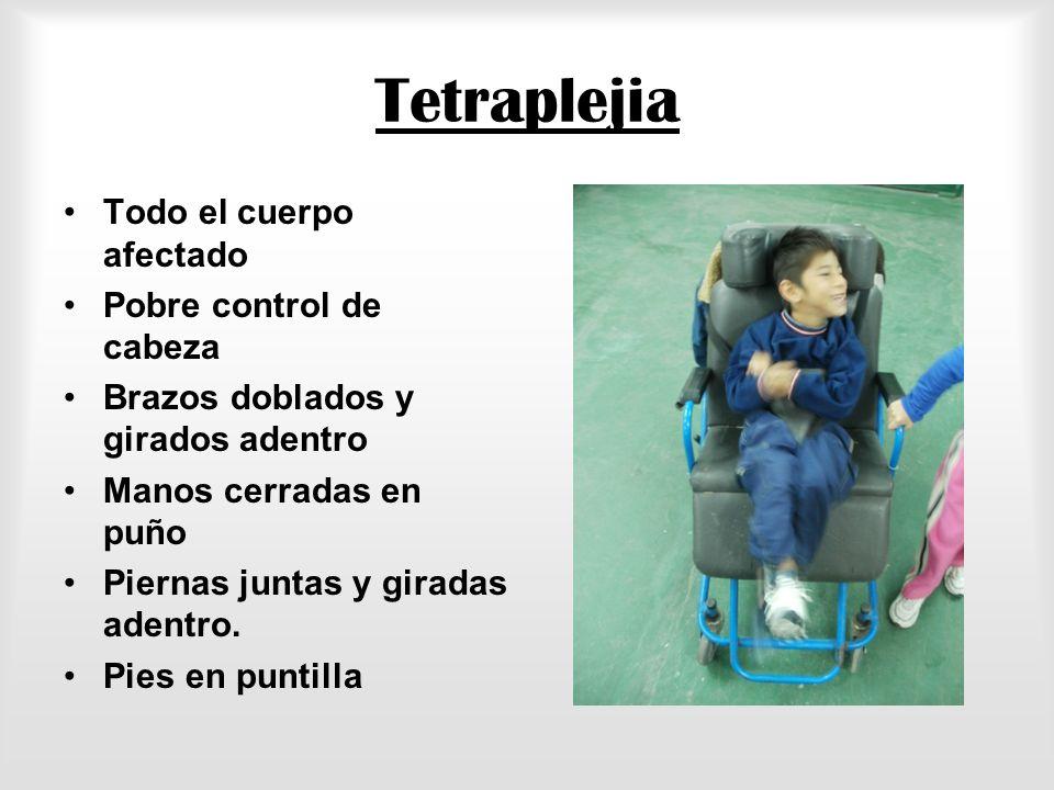 Instituto IMER Niño Y Familia KinesiólogoPsicólogoFonoaudiólogo Terapista Ocupacional