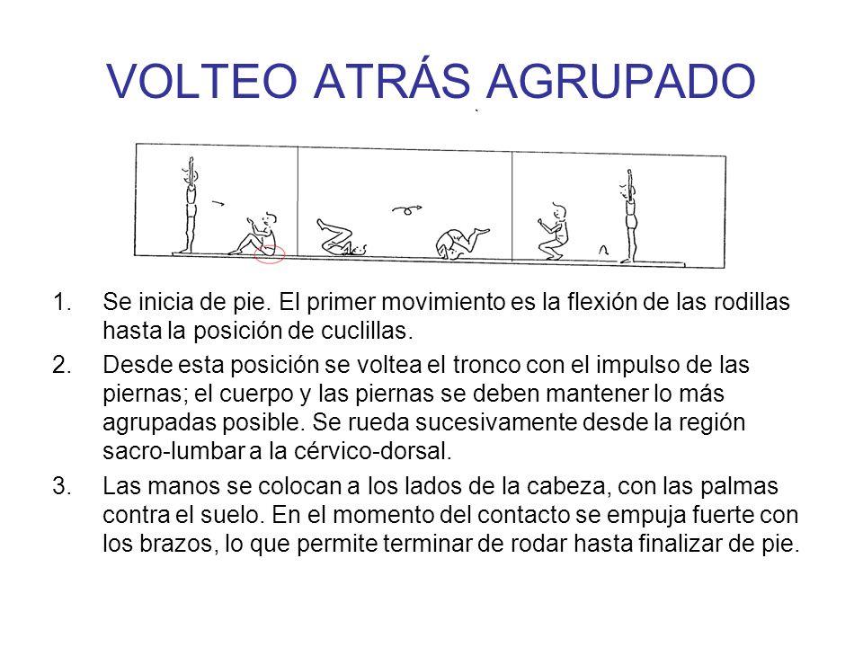EQUILIBRIO INVERTIDO DE BRAZOS 1.De pie con brazos elevados y extendidos.