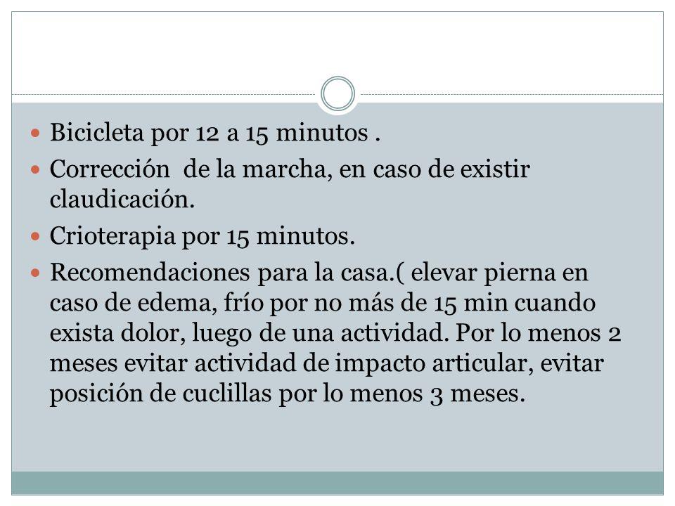 Bicicleta por 12 a 15 minutos. Corrección de la marcha, en caso de existir claudicación. Crioterapia por 15 minutos. Recomendaciones para la casa.( el