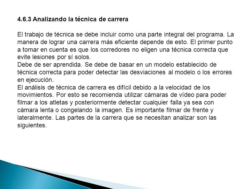 CICLO DE ZANCADA a.