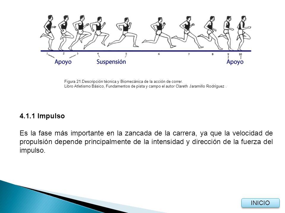 Las articulaciones del pie, rodilla y caderas se extienden al máximo, una vez que el CG (centro de gravedad) sobrepasa la vertical, proyectando la cadera hacia adelante.