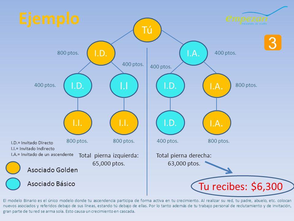 3 Tú I.D. I.I I.D. I.A. El modelo Binario es el único modelo donde tu ascendencia participa de forma activa en tu crecimiento. Al realizar su red, tu