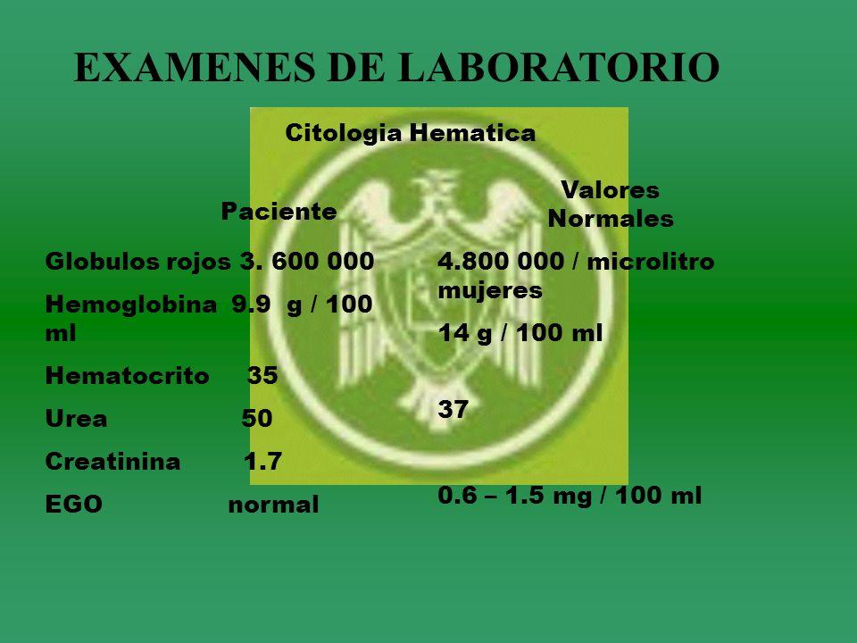 EXAMENES DE LABORATORIO Citologia Hematica Paciente Valores Normales Globulos rojos 3. 600 000 Hemoglobina 9.9 g / 100 ml Hematocrito 35 Urea 50 Creat