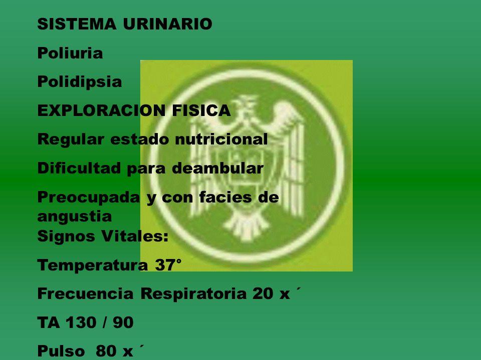 SISTEMA URINARIO Poliuria Polidipsia EXPLORACION FISICA Regular estado nutricional Dificultad para deambular Preocupada y con facies de angustia Signo