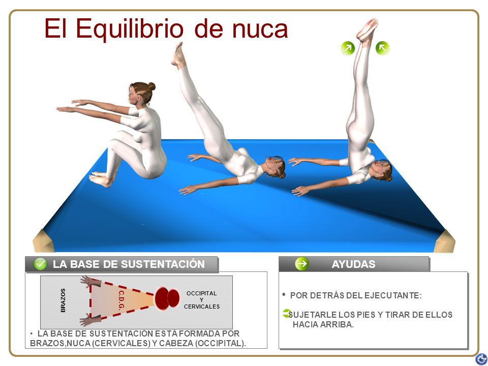 LA BASE DE SUSTENTACIÓN ESTÁ FORMADA POR BRAZOS,NUCA (CERVICALES) Y CABEZA (OCCIPITAL). C.D.G. LA BASE DE SUSTENTACIÓN El Equilibrio de nuca AYUDAS PO