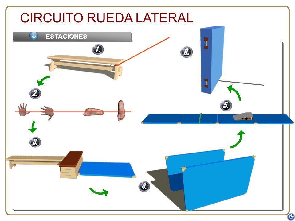 CIRCUITO RUEDA LATERAL ESTACIONES