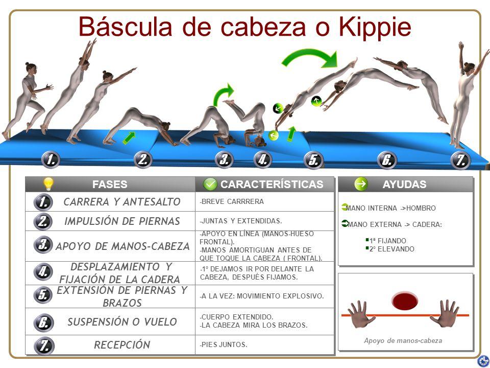 Báscula de cabeza o Kippie FASES CARRERA Y ANTESALTO IMPULSIÓN DE PIERNAS APOYO DE MANOS-CABEZA DESPLAZAMIENTO Y FIJACIÓN DE LA CADERA DESPLAZAMIENTO