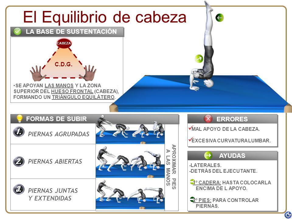 APROXIMAR PIES A LAS MANOS SE APOYAN LAS MANOS Y LA ZONA SUPERIOR DEL HUESO FRONTAL (CABEZA), FORMANDO UN TRIÁNGULO EQUILÁTERO. FORMAS DE SUBIR C.D.G.