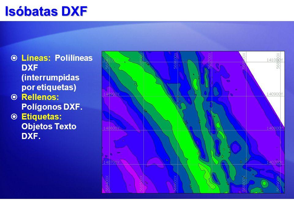 Isóbatas DXF Líneas: Polilíneas DXF (interrumpidas por etiquetas) Rellenos: Polígonos DXF. Etiquetas: Objetos Texto DXF.