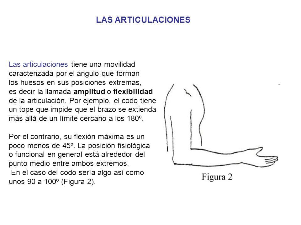Las articulaciones tiene una movilidad caracterizada por el ángulo que forman los huesos en sus posiciones extremas, es decir la llamada amplitud o flexibilidad de la articulación.