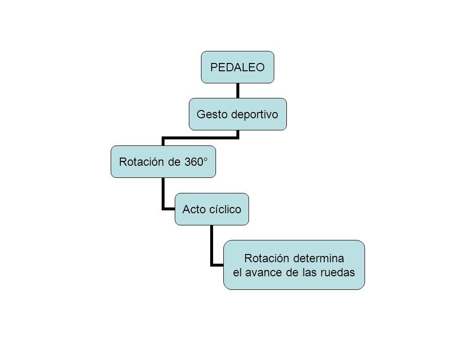 ALTURA DEL SILLÍN Entrepiernas Similitud de barras Largo x 0,893 Suelas 12 mm LARGO PIERNASALTURA CUADRO 8051,0 8252,4 8353,1 8453,7 8554,3 8654,9 8755,5