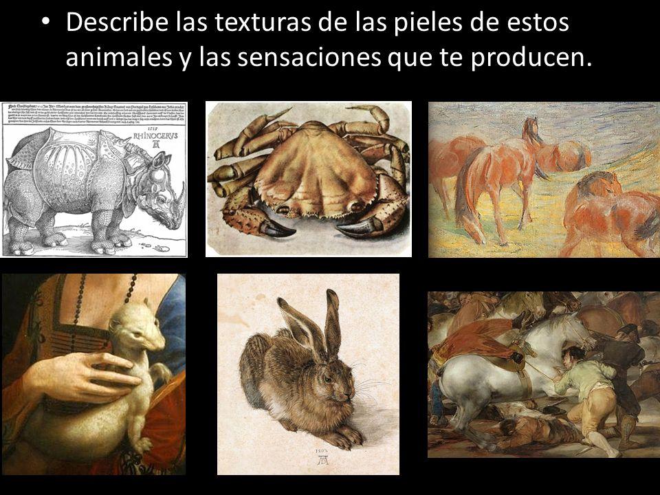 Describe las texturas de las pieles de estos animales y las sensaciones que te producen.