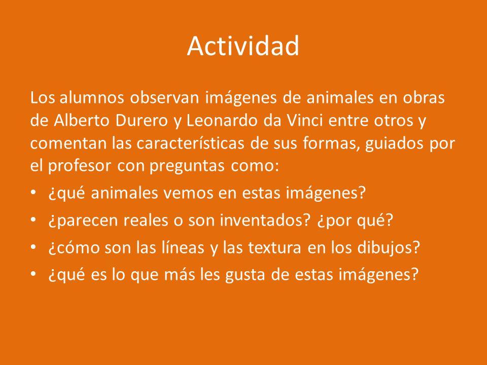 Actividad Los alumnos observan imágenes de animales en obras de Alberto Durero y Leonardo da Vinci entre otros y comentan las características de sus f