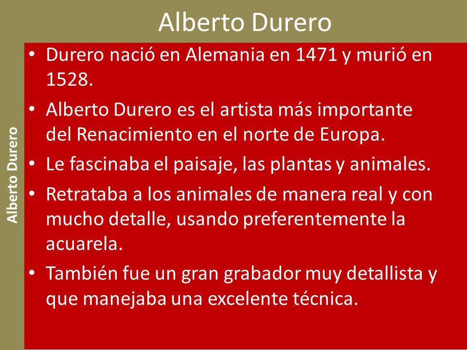 Alberto Durero Durero nació en Alemania en 1471 y murió en 1528. Alberto Durero es el artista más importante del Renacimiento en el norte de Europa. L