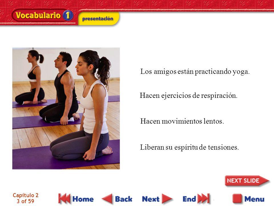 Capítulo 2 3 of 59 Los amigos están practicando yoga. Hacen ejercicios de respiración. Hacen movimientos lentos. Liberan su espíritu de tensiones.