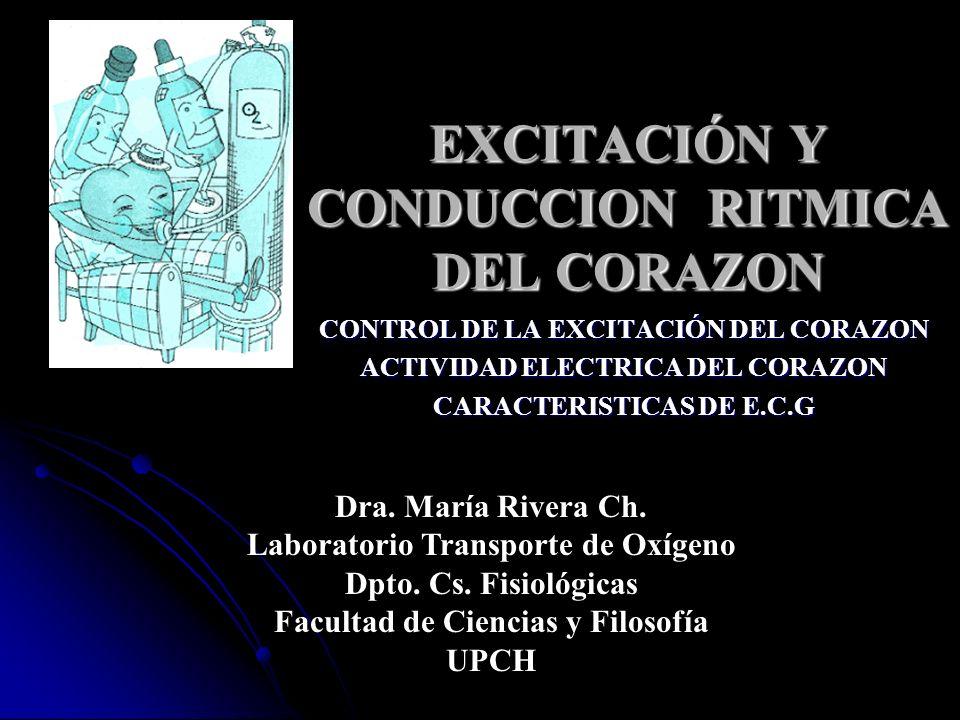EXCITACIÓN Y CONDUCCION RITMICA DEL CORAZON CONTROL DE LA EXCITACIÓN DEL CORAZON ACTIVIDAD ELECTRICA DEL CORAZON CARACTERISTICAS DE E.C.G Dra. María R