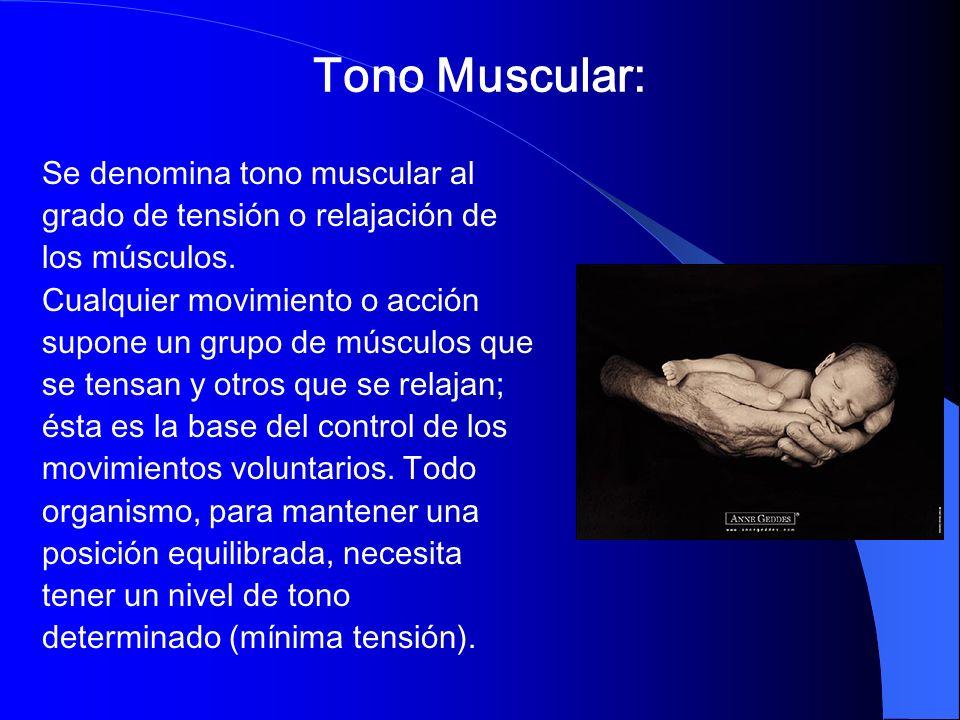 Tono Muscular: Se denomina tono muscular al grado de tensión o relajación de los músculos. Cualquier movimiento o acción supone un grupo de músculos q