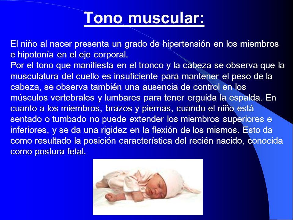 Tono muscular: El niño al nacer presenta un grado de hipertensión en los miembros e hipotonía en el eje corporal. Por el tono que manifiesta en el tro